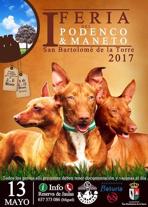 cartel podenco